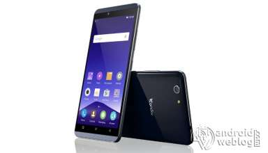 Condor Plume P8 Root and Recovery